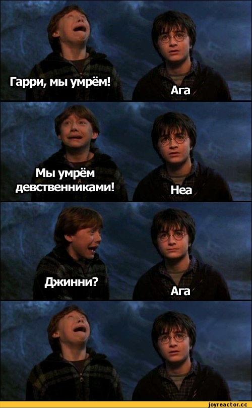 Гарри Поттер смешные фото и картинки008