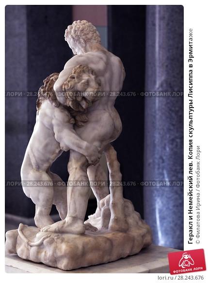 Геракл и лев картинки   подборка 011