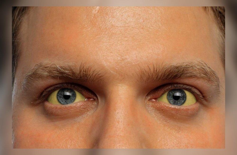 Глаза человека картинка для детей   подборка 002