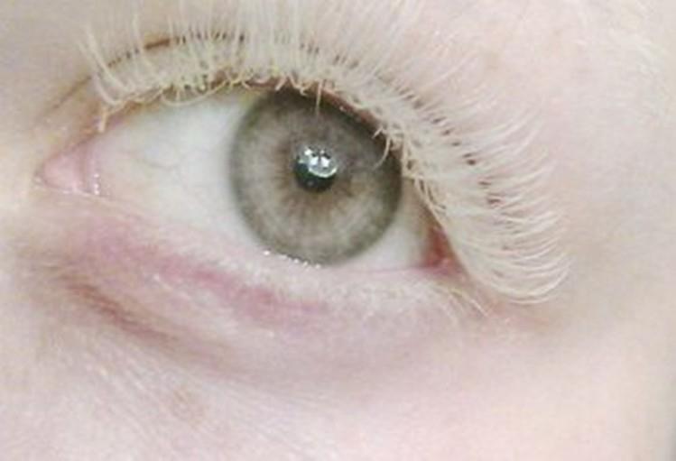Глаза человека картинка для детей   подборка 011
