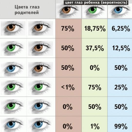 Глаза человека картинка для детей   подборка 012