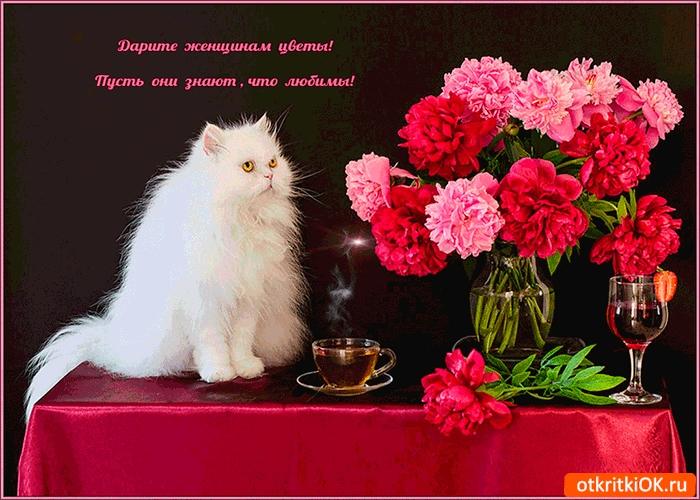 Дарите женщинам цветы картинки и открытки 001
