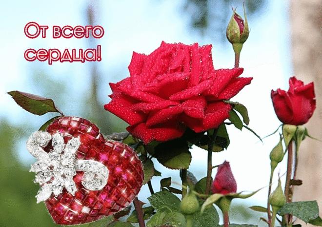 Дарите женщинам цветы картинки и открытки 012