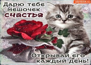 Дарю тебе счастье картинки и открытки022