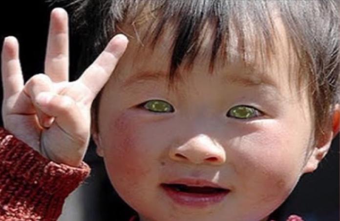 Девочка с самыми красивыми глазами 008
