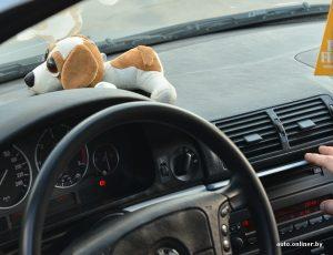 Девушка за рулем на аву без лица   фотки 019