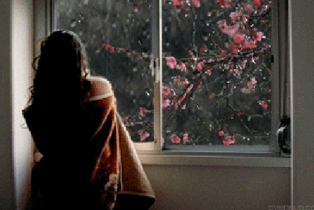 Девушка и дождь   красивые фото (7)