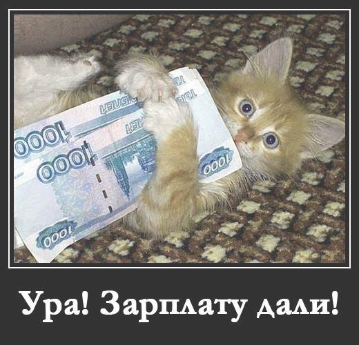 Демотиваторы про зарплату смешные и веселые009