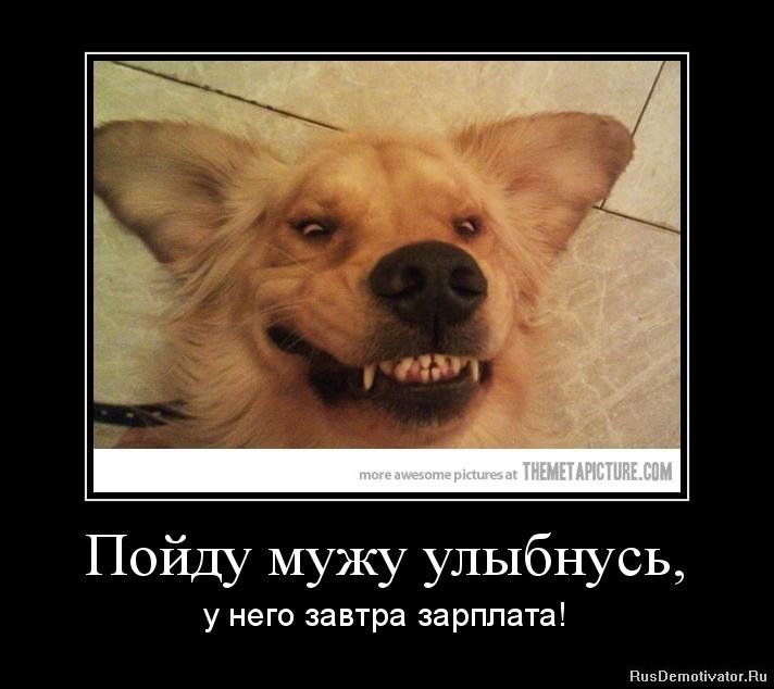 Демотиваторы про зарплату смешные и веселые017