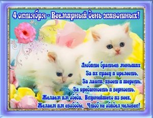 День защиты животных открытки и картинки 023