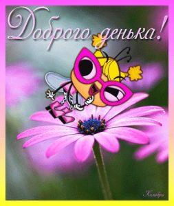 Доброго дня открытки прикольные и красивые 029