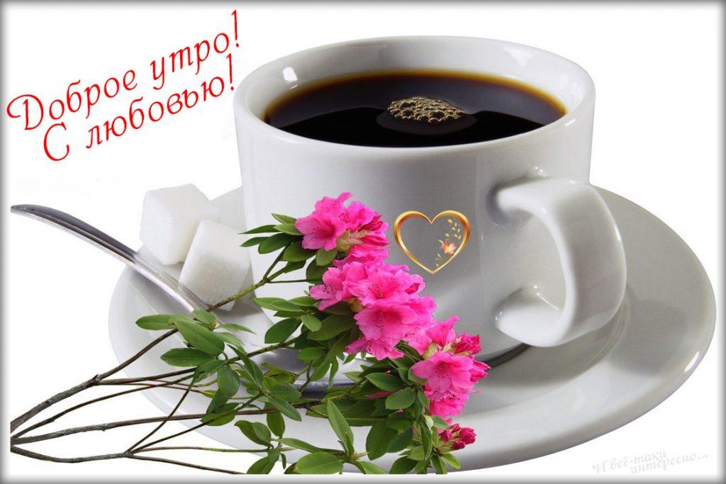 Дню снега, открытки доброго утра и хорошего дня душа моя