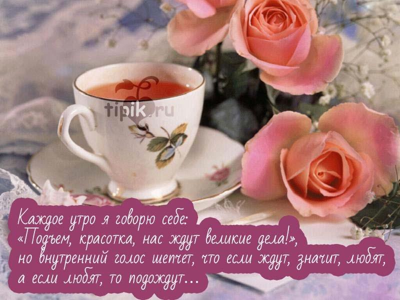 Доброе утро красавицы открытка