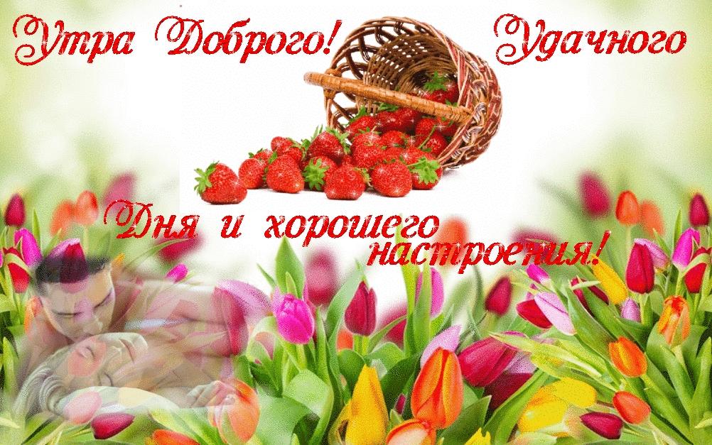 Доброе утро отличного настроения и прекрасного дня.   картинки 004