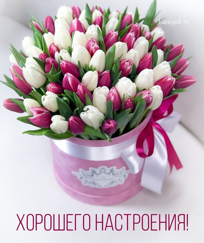 Доброе утро отличного настроения и прекрасного дня.   картинки 012