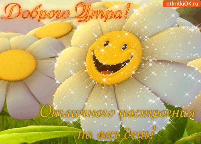 Доброе утро отличного настроения и прекрасного дня.   картинки 018