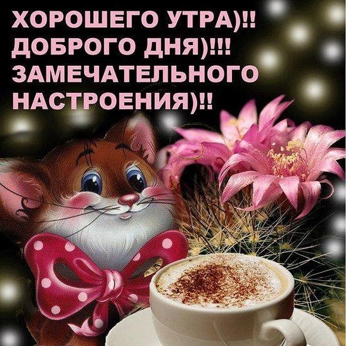 Доброе утро отличного настроения и прекрасного дня.   картинки 023