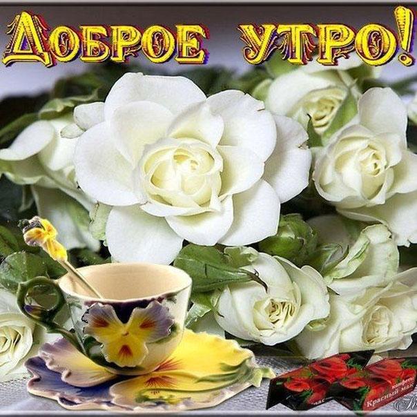 Доброе воскресное утро картинки с надписями цветы, раскраски рождения
