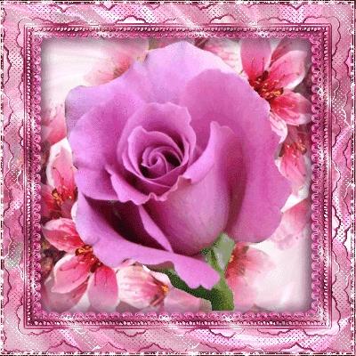 Доброй ночи картинки цветы   очень красивые014