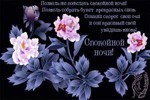 Доброй ночи фото цветы   подборка028