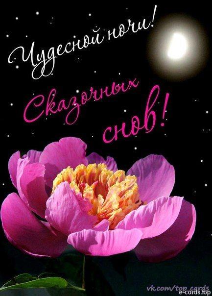 Доброй ночи цветы картинки и открытки001
