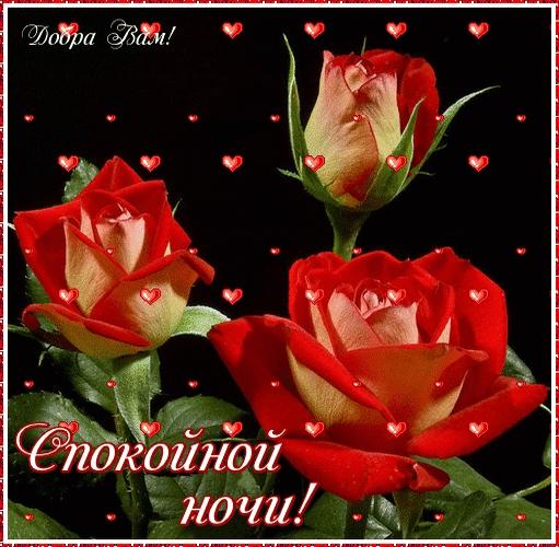 Доброй ночи цветы картинки и открытки002