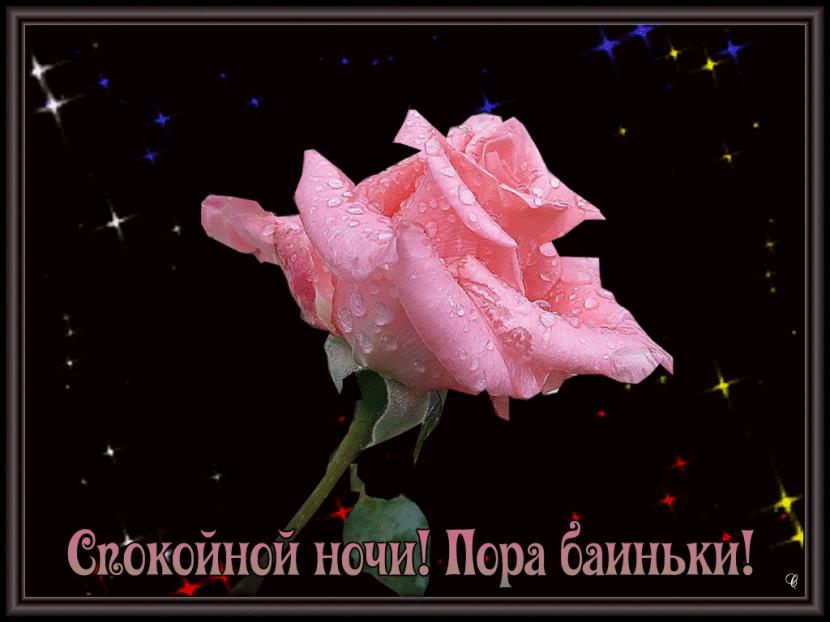 Доброй ночи цветы картинки и открытки006