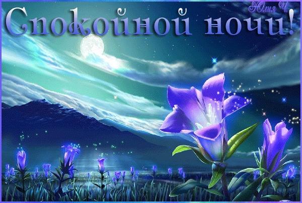 Доброй ночи цветы картинки и открытки007