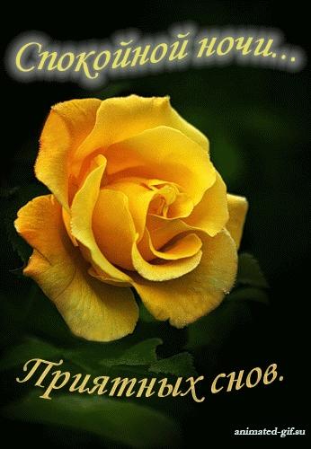 Доброй ночи цветы картинки и открытки012