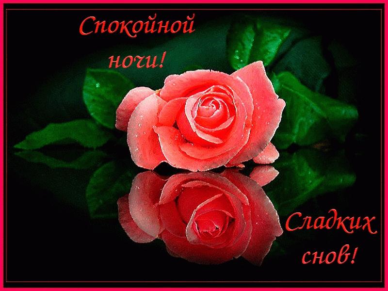 Доброй ночи цветы картинки и открытки013