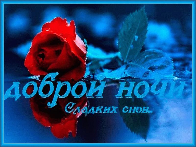 Доброй ночи цветы картинки и открытки014