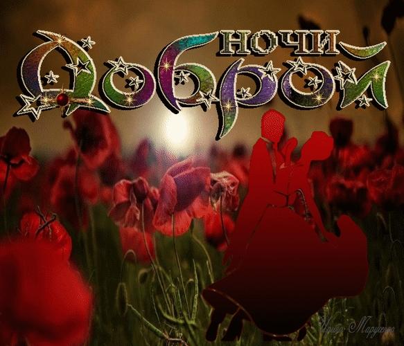 Доброй ночи цветы картинки и открытки015