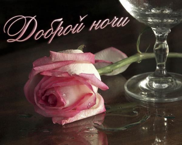 Доброй ночи цветы картинки и открытки021