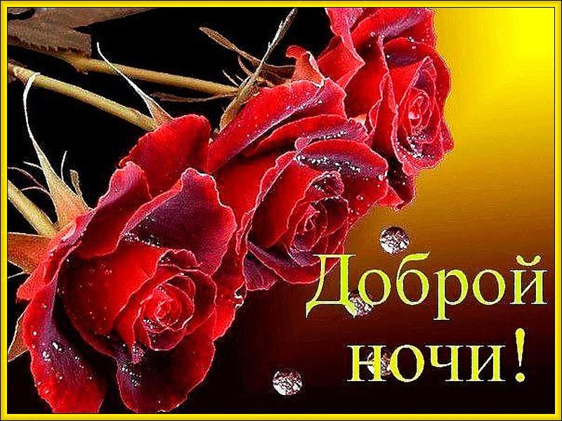 Доброй ночи цветы картинки и открытки022