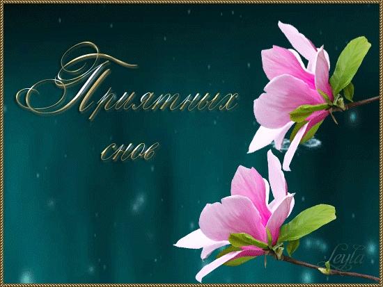 Доброй ночи цветы картинки и открытки024