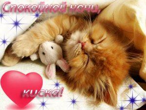 Доброй ночи целую картинки и открытки029