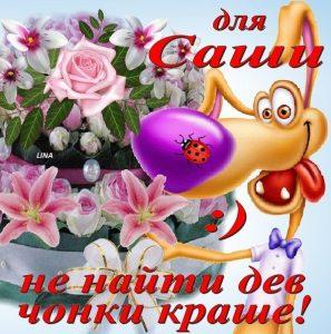 Добрый день Саша картинки и открытки 023