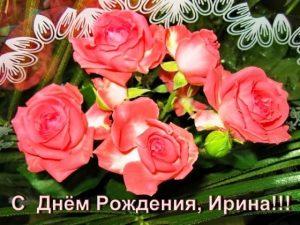 Дорогая Иришка с днем рождения   открытки 029