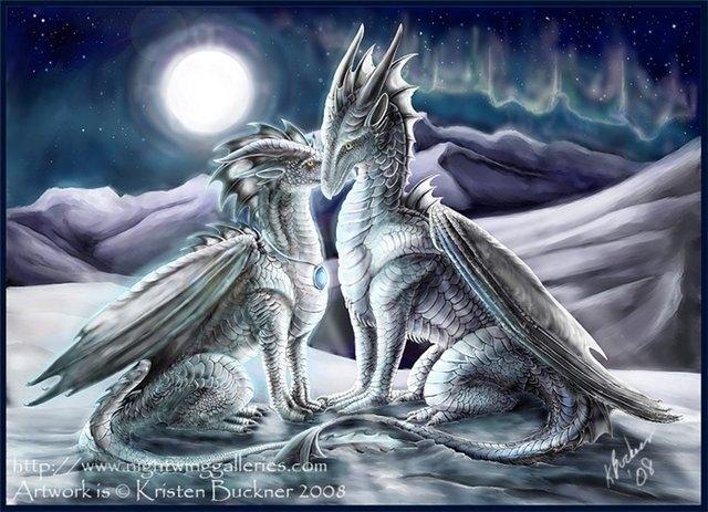 Драконы фото и картинки красивые 002
