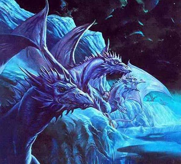Драконы фото и картинки красивые 005
