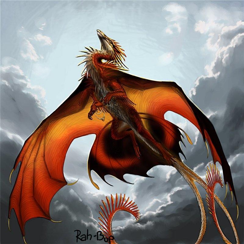 Драконы фото и картинки красивые 006