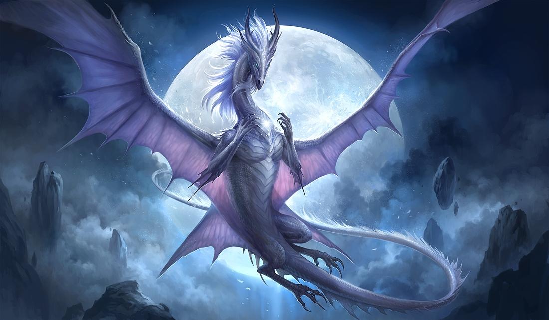 Драконы фото и картинки красивые 012