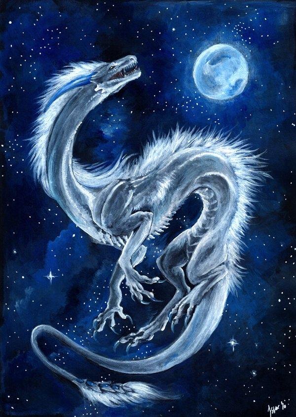 Драконы фото и картинки красивые 019