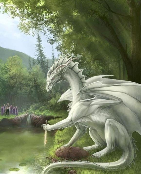 Драконы фото и картинки красивые 023