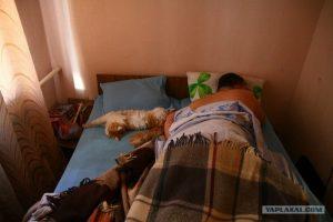Жена моя спит фото и картинки023