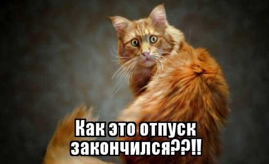 Открытки отпуск закончился в понедельник на работу, днем россии