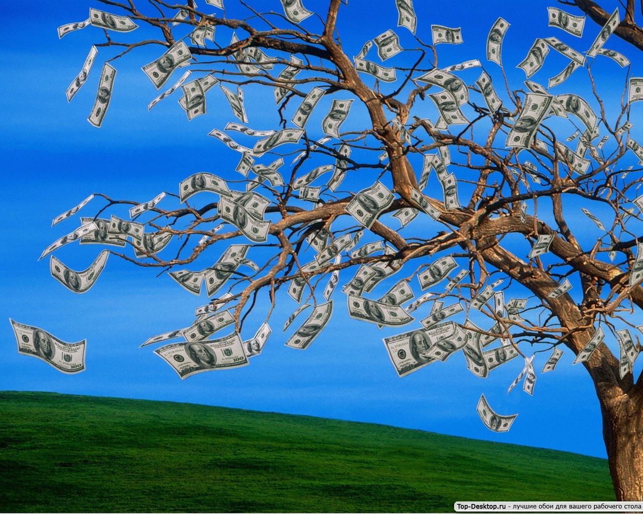 Заставка на рабочий стол денежная   подборка (5)