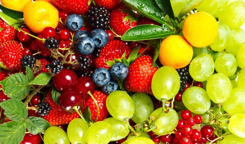 лучше картинки на телефон красивые ягоды после тщательного