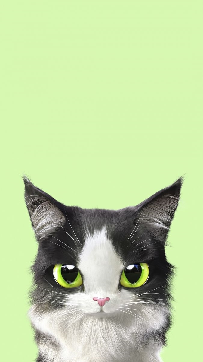Заставки на телефон котята   милые и смешные (31)
