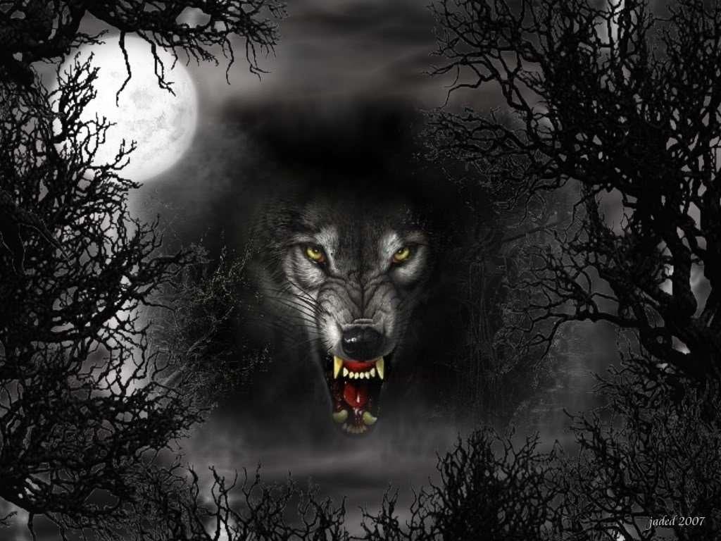Заставки на телефон скачать волки (10)